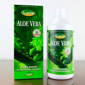 Aloe_verapura